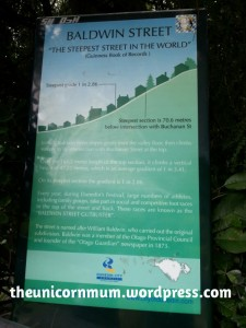 World's Steepest Road
